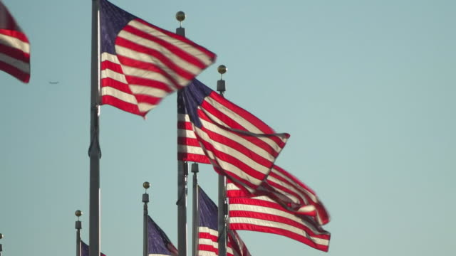 usa flags on capitol hill - capital cities stock videos & royalty-free footage