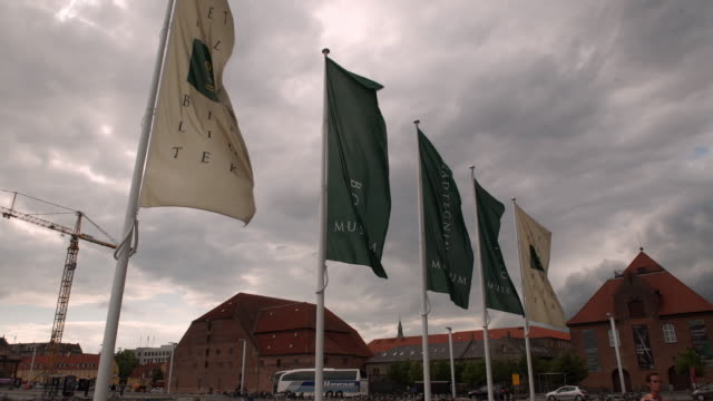 flags outside the royal library in copenhagen - 公共図書館点の映像素材/bロール