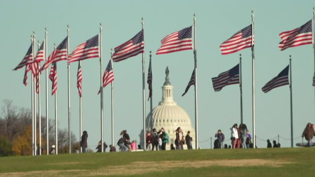 usa flags with capitol building in background - capital cities stock videos & royalty-free footage