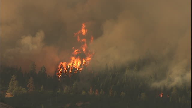Flames and thick smoke rise from a forest fire near Ashland, Oregon.