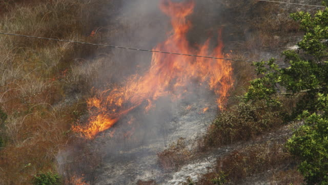 Flames around a patch of ashes quickly consume dry grass in their path