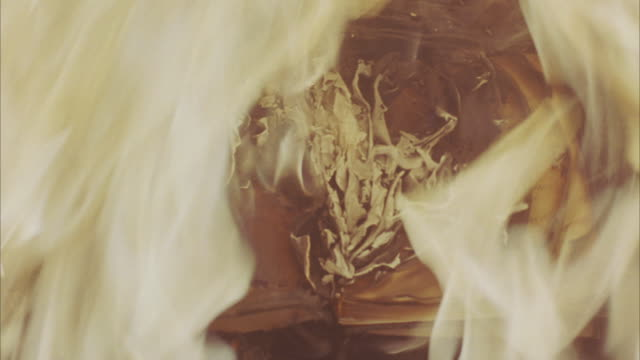 flames consume a handwritten book thrown into a fireplace. - burning点の映像素材/bロール