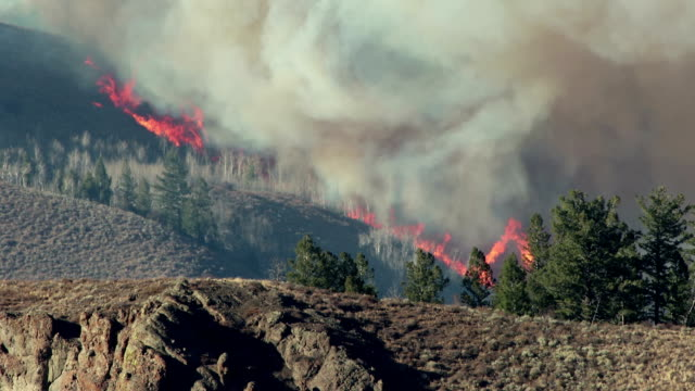 flames devour arapahoe national forest in east troublesome fire burning colorado wildfire - climate change stock videos & royalty-free footage