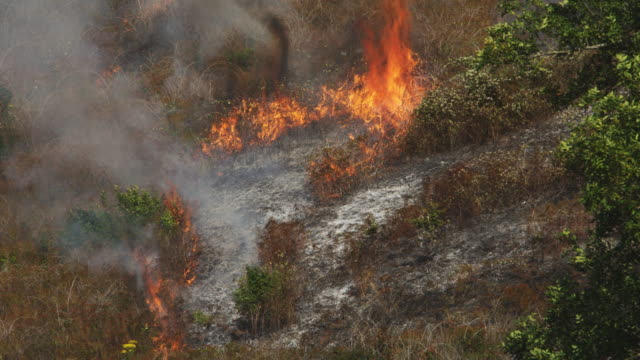 Flames from hot ashes spread through dry grass on a hillside