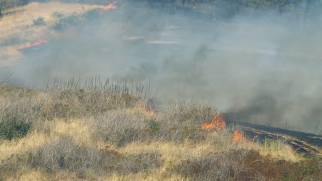 Flames lick at the edge of dry grass on a burning hillside