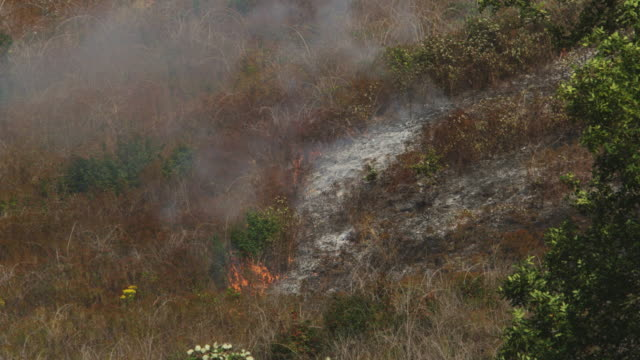 Flames shoot up from ashes in dry grass on a brushy hillside