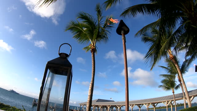 stockvideo's en b-roll-footage met vlammende toorts naast palmbomen met water en boot in de afstand - tiki torch