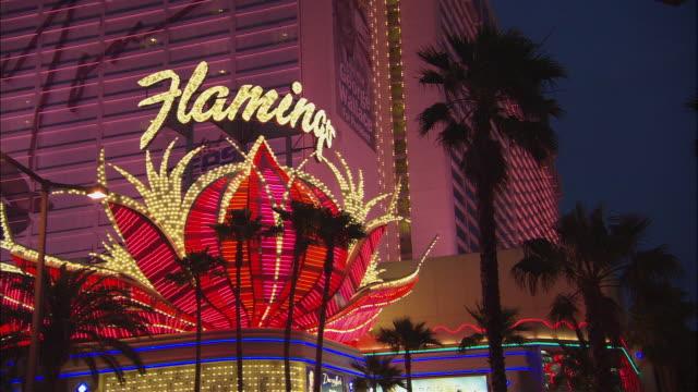 ms flamingo hotel neon sign blinking at night/ las vegas, nevada - flamingo hilton stock videos & royalty-free footage