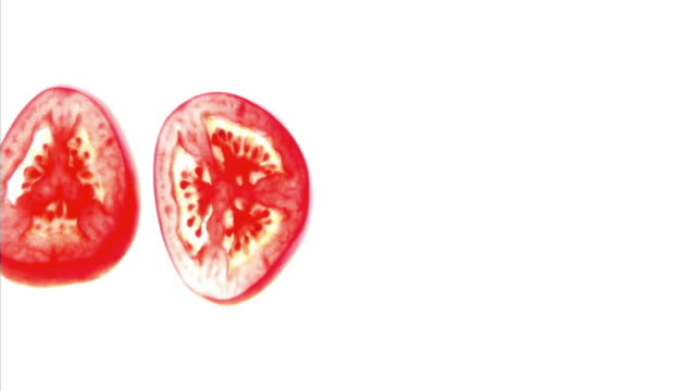 vídeos y material grabado en eventos de stock de flash cuts of four tomato slices appearing on a white backlit surface. - cuatro objetos