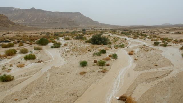 flash flood evolving in the desert /arava valley& negev desert , israel - negev stock videos & royalty-free footage