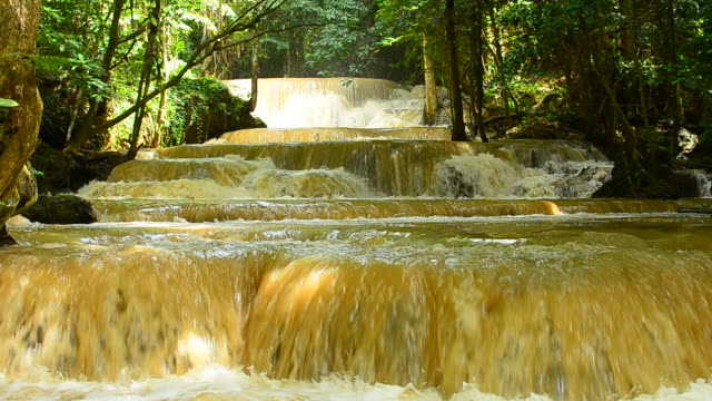 flash flood waterfall in the forests - full hd format stock videos & royalty-free footage