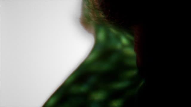 vidéos et rushes de flashing green light on man's eye - l'homme et la machine