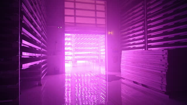 flashing light and rising door in led-lit vertical farm - 10 seconds or greater stock videos & royalty-free footage