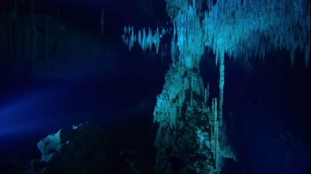 flashlight beams illuminate stalactites in a cenote cave, yucatan, mexico. available in hd. - cave stock videos & royalty-free footage