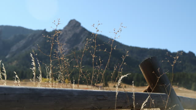 flatirons rock formations, landscape w/ green trees & brown grass, unidentifiable people walking up path, wooden fence & tall weeds fg. - boulder rock stock-videos und b-roll-filmmaterial