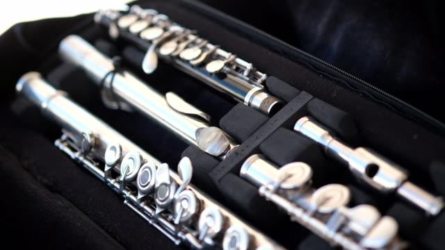 Flautist woman