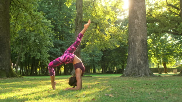 ms flexible young woman practicing yoga backbend and forearm splits in sunny park - avambraccio video stock e b–roll