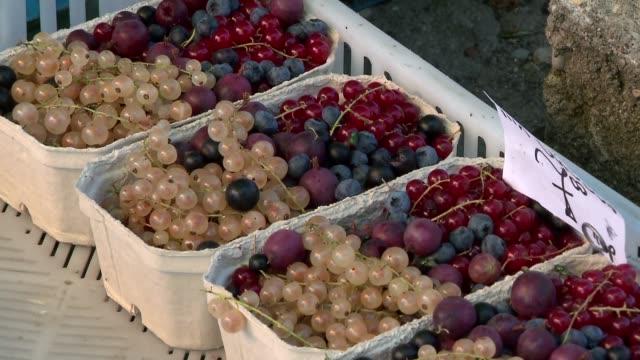 flies on fruit on market - wirbelloses tier stock-videos und b-roll-filmmaterial