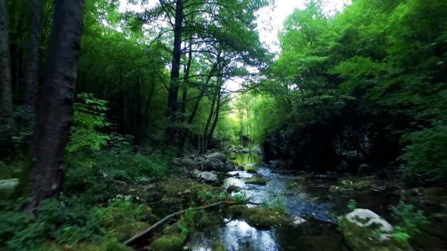 vídeos de stock, filmes e b-roll de voo acima da floresta rio - viaduto entroncamento