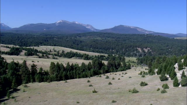 Flight Across Beaverhead Deerlodge National Forest  - Aerial View - Montana, Powell County, United States