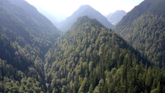 flight along gorges on transfagarasan - transilvania video stock e b–roll
