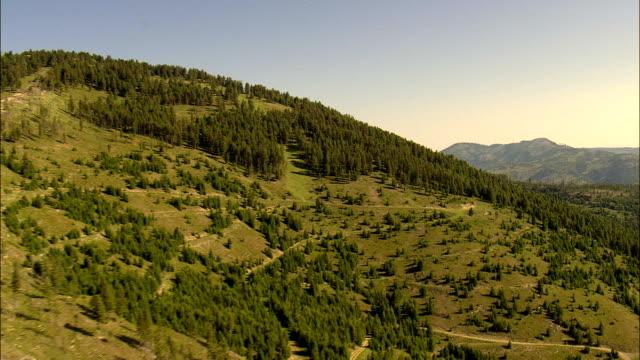 vídeos de stock, filmes e b-roll de voo rápida e baixa de árvores em granada gama-vista aérea-montana, condado de missoula, estados unidos - baixo posição