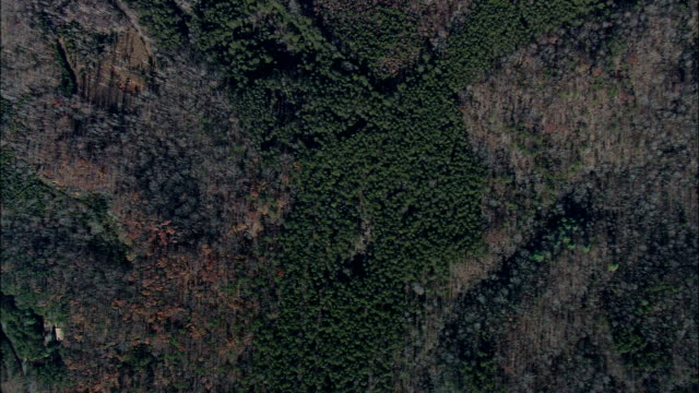 Flight Looking Down On Woods And Fields  - Aerial View - North Carolina,  Polk County,  United States