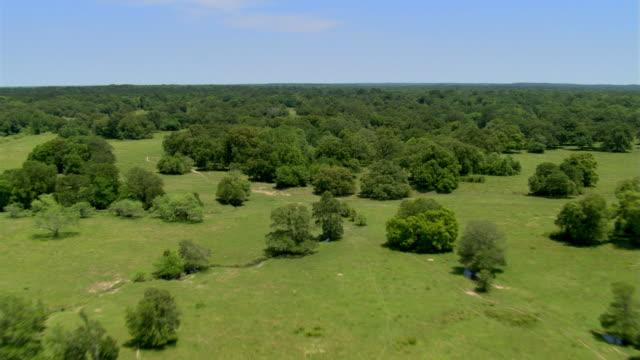 Flight over an oak savanna near Huntsville,  Texas