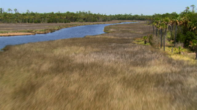 flight over barren grassland toward trees along a florida river - artbeats stock videos & royalty-free footage