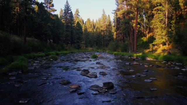 flight over bridge creek, oregon - umatilla stock videos and b-roll footage