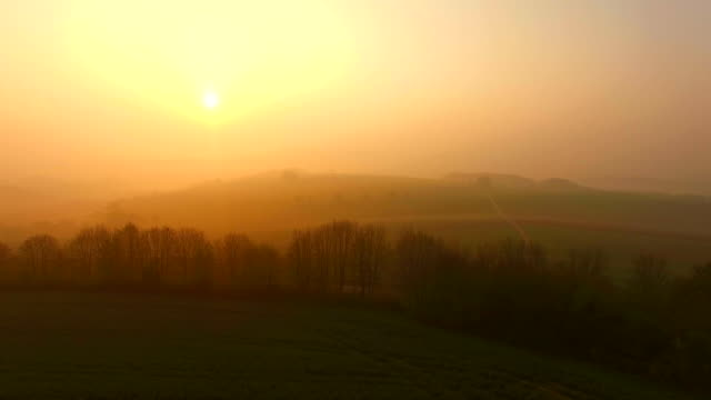 Flight over farmland and tree on Saargau at sunrise, Kirf, Rhineland-Palatinate, Germany