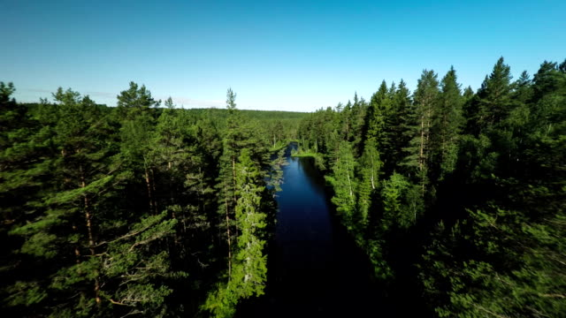 Flight over River in Boreal Forest