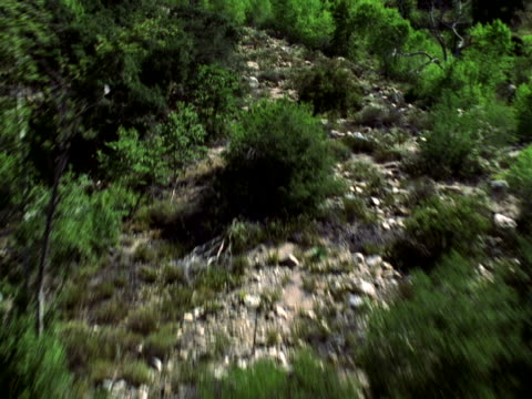 flight over rough terrain - shrubland stock videos & royalty-free footage