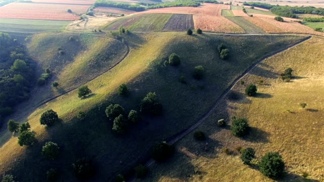 flight over sandhills - serbia stock videos and b-roll footage