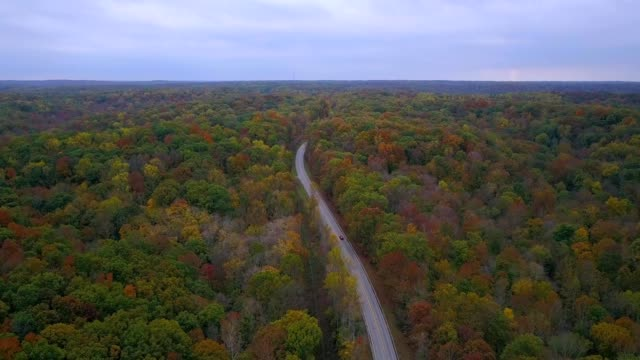 a flight over the fall colored trees. - indiana stock videos & royalty-free footage