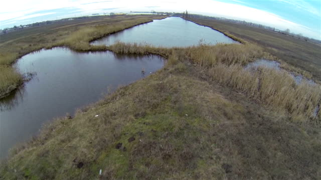 flight over the lake - copse stock videos and b-roll footage