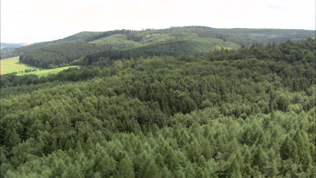flight over thuringian forest - turingia video stock e b–roll