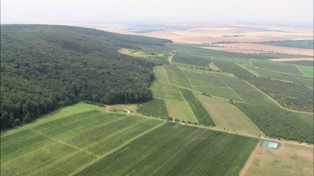flight over woods and farmaland - turingia video stock e b–roll