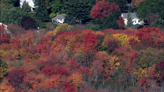 Flight Past Fall Colors Near Lexington  - Aerial View - Massachusetts,  Middlesex County,  United States
