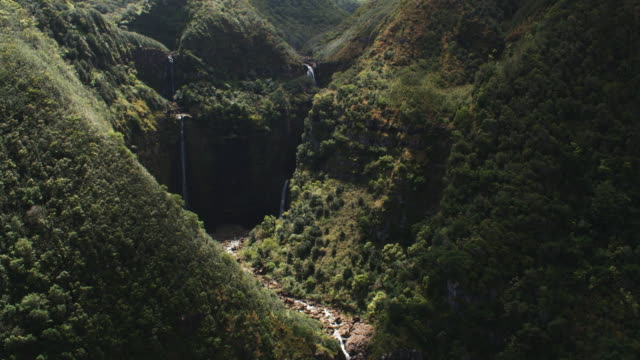 Flight past steep wooded slope to reveal and orbit plunging waterfalls on Molokai