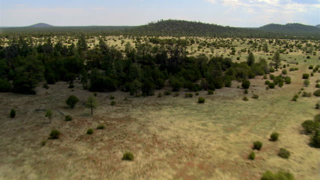 flight toward low hills beyond miles of arizona pine and scrub forest - artbeats stock videos & royalty-free footage