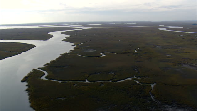 stockvideo's en b-roll-footage met vlucht met stijging te onthullen salt marsh - luchtfoto - zuid-carolina, charleston county, verenigde staten - moeras
