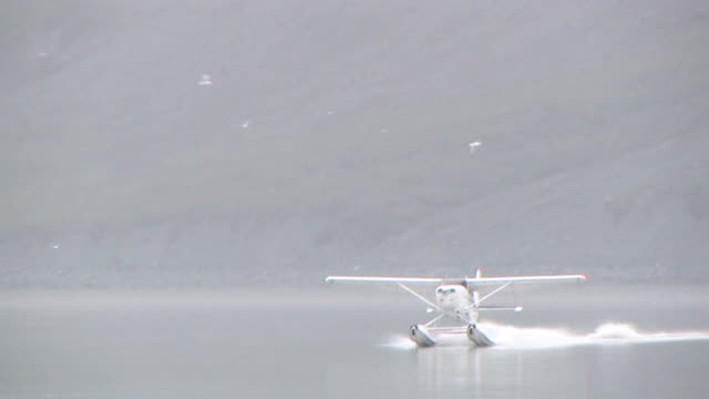 ws, float plane landing on water, tarr inlet, glacier bay national park and preserve, alaska, usa - splashdown stock videos & royalty-free footage