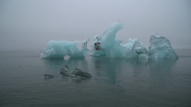 floating iceberg bits, svalbard, norway 1 - svalbard islands stock videos & royalty-free footage