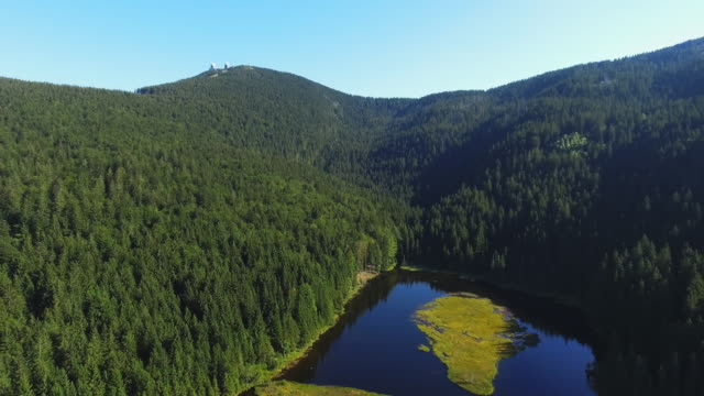 floating island on lake kleiner arbersee in bavaria - spruce stock videos & royalty-free footage