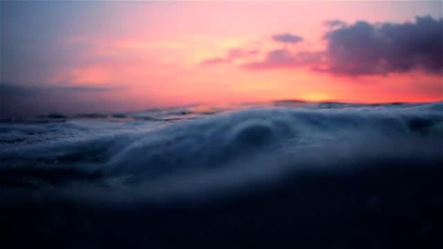 schwimmt auf der oberfläche des ozeans während des sonnenuntergangs - entwicklung stock-videos und b-roll-filmmaterial
