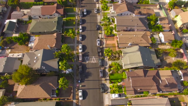 Floating Over a Palm-Tree Lined Street in Los Angeles