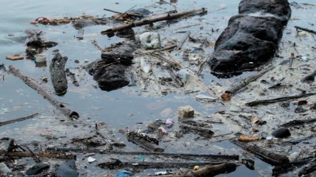vídeos y material grabado en eventos de stock de flotante de residuos - antihigiénico