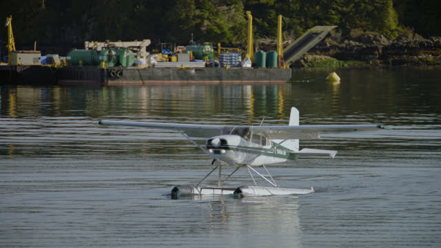 a floatplane glides across the water of the tofino inlet. - inlet stock videos & royalty-free footage