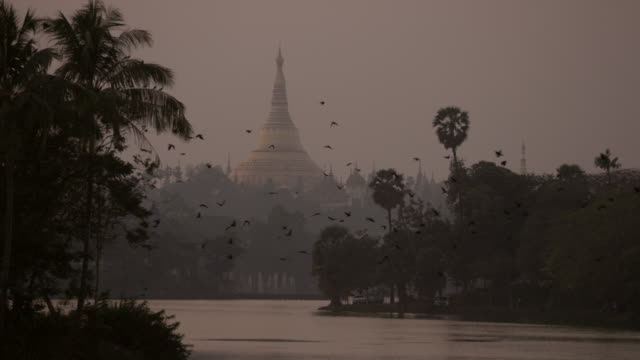 Flock of birds fly in front of iconic temple in Myanmar